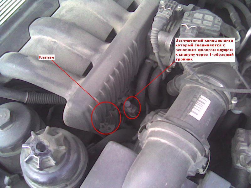 вентиляция бензобака bmw e39